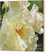 Sunny Rose Garden Wood Print