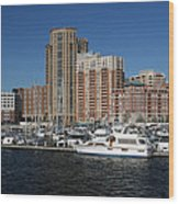 In The Harbor Wood Print