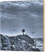 In The Jetty Moss Landing Monterey County  Wood Print