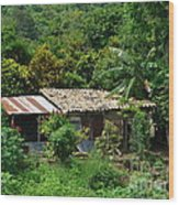 In The Jungle House Wood Print