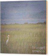 In The Marsh  Wood Print