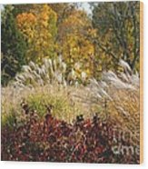 In The Meadow 2 Wood Print