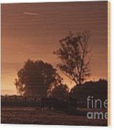 In The  Morning Light Wood Print