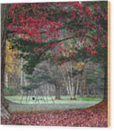 In The Park Square Wood Print