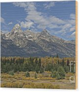 In The Shadow Of The Tetons Wood Print