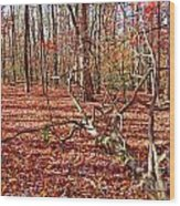 In The Shadows Of Fall 1 Wood Print