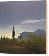 In The Shadows Of The Superstitions  Wood Print