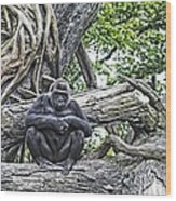 In The Treetop Wood Print