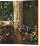 In The Woods By The River Wood Print