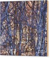 In The Woods V5 Wood Print
