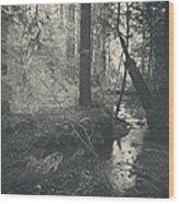 In This Silence Wood Print by Laurie Search