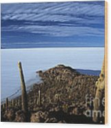 Incahuasi Island And Salar De Uyuni Wood Print