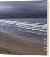 Inch Beach Co Kerry Ireland Wood Print by Dick Wood