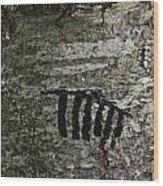 Indecipherable Wood Print