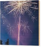 Independence Day 2014 1 Wood Print by Alan Marlowe