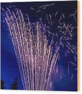 Independence Day 2014 17 Wood Print by Alan Marlowe