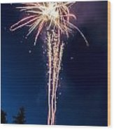 Independence Day 2014 7 Wood Print by Alan Marlowe
