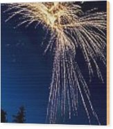 Independence Day 2014 8 Wood Print by Alan Marlowe