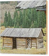 Independence Ghost Town Wood Print by David Davis