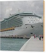 Independence Of The Seas Wood Print