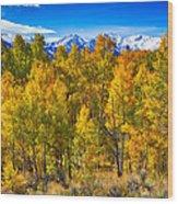 Independence Pass Autumn Colors Wood Print