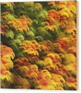 Indian Blanket Psychedelic Wood Print
