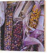 Indian Corn Harvest Wood Print