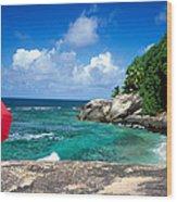 Indian Ocean Moyenne Island Seychelles Wood Print