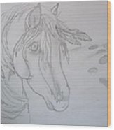 Indian Pony Wood Print by Rosalie Klidies