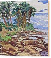 Indian River Lagoon Wood Print