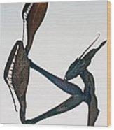 Indian Rose Mantis Gonglus Gongylodes Wondering Violin Mantis  1 Of 3 Wood Print