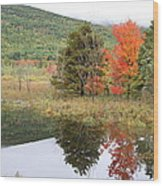 Indian Summer Acadia Park Wood Print