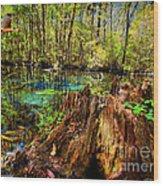 Indian Summer At Buford Spring Wood Print