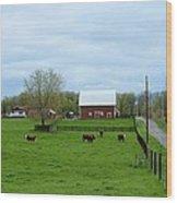 Indiana Barn 6 Wood Print