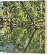 Indiana Reflections Wood Print