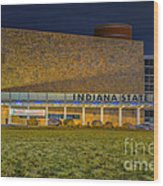 Indiana State Museum Night Delta Wood Print