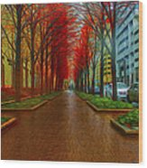 Indianapolis Autumn Trees Oil Wood Print by David Haskett