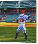 Indianapolis Indians Catcher Wood Print