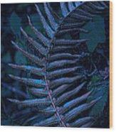 Indigo Fern Wood Print