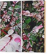 Indigo Plant In Stereo Wood Print