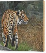 Indo-chinese Tiger Wood Print