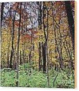 Infared Fall In Indiana Wood Print