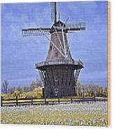 Infrared Photo Of The Dezwaan Dutch Windmill On Windmill Island In Holland Michigan Wood Print