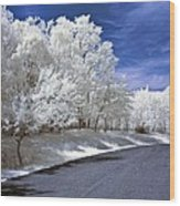 Infrared Road Wood Print