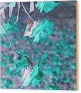 Infrared Roses Wood Print