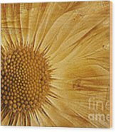 Infusion Wood Print by John Edwards