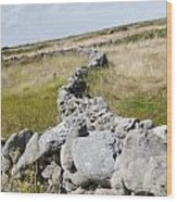 Inis Mor Fields Of Stone Wood Print