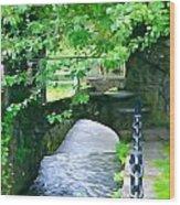 Inistioge Park Wood Print