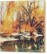 Inizio Inverno Wood Print by Halina Nechyporuk