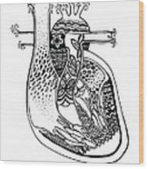 Ink Heart Wood Print